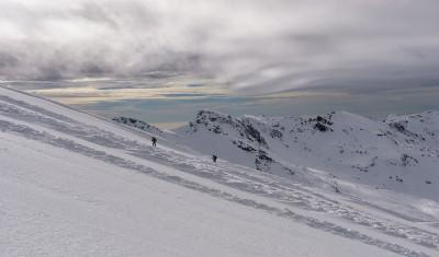 Senderos de nieve de seda © 2015 franMoreno