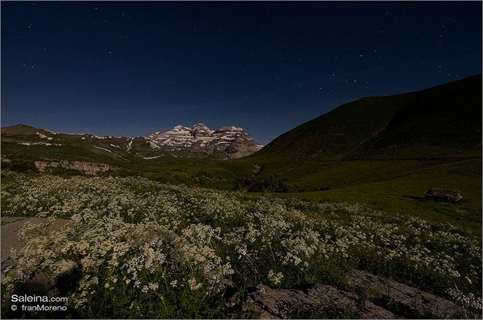 Añisclo, el cañón desde los Sestrales y la montaña de Sesa