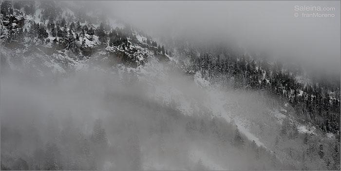 Arán, el valle atlántico del Pirineo